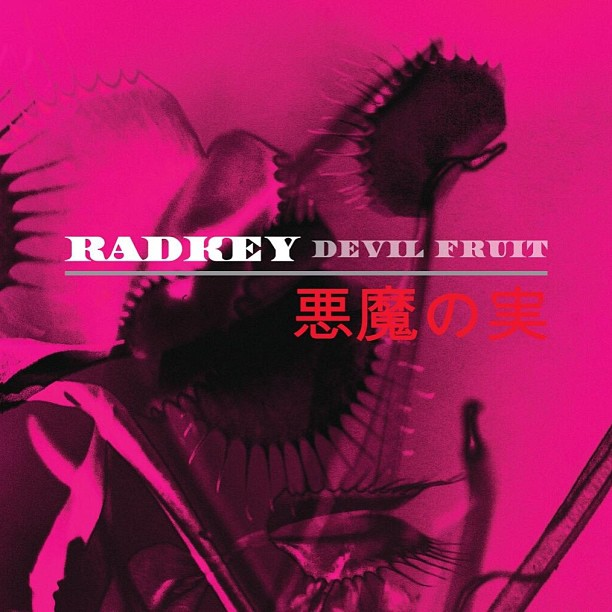 radkey devil fruit